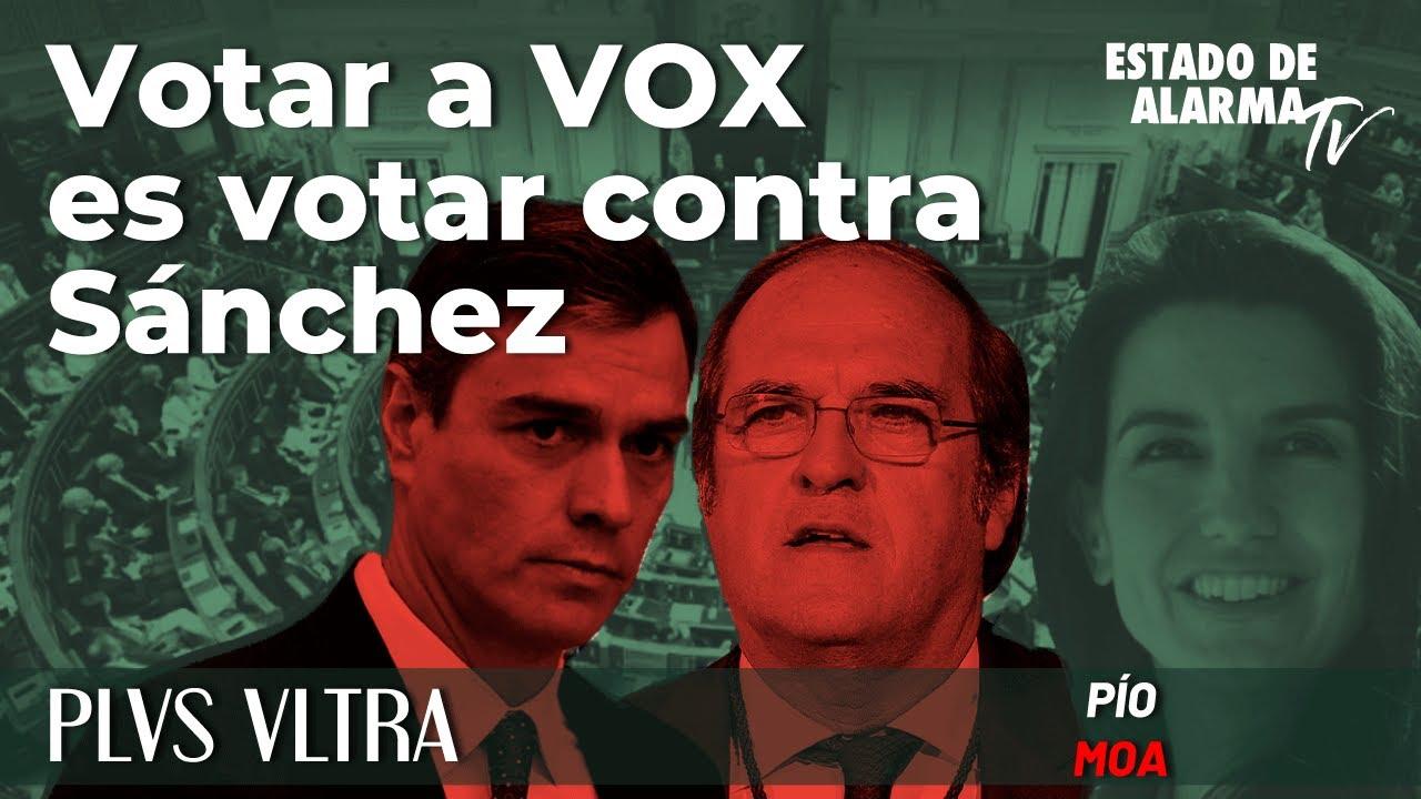 Plus Ultra con Pío Moa: Votar a Vox es votar contra Sánchez