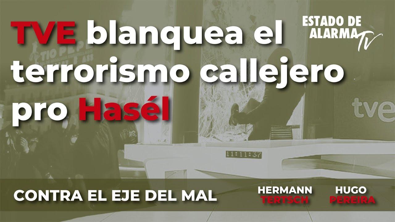 Contra el Eje del Mal: TVE blanquea el terrorismo callejero pro Hasél, Hermann Tertsch