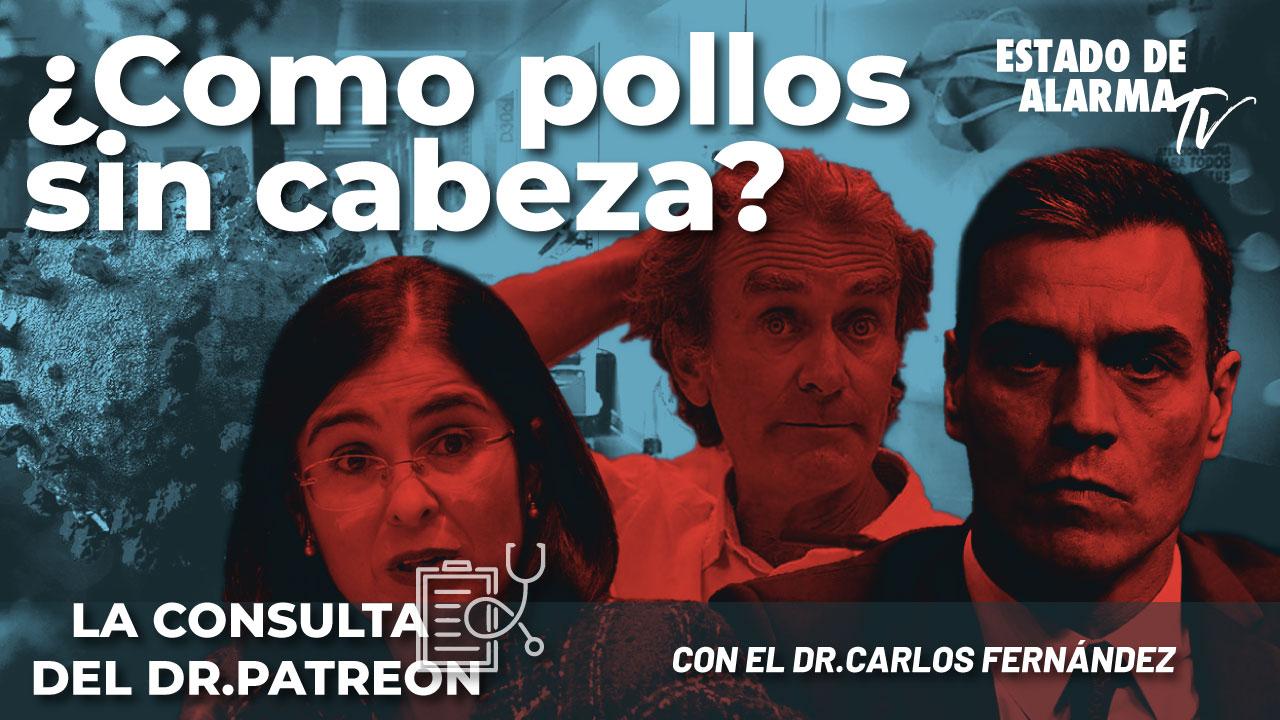 La consulta del Dr. Patreon: ¿Como pollos sin cabeza? con el Dr. Carlos Fernández