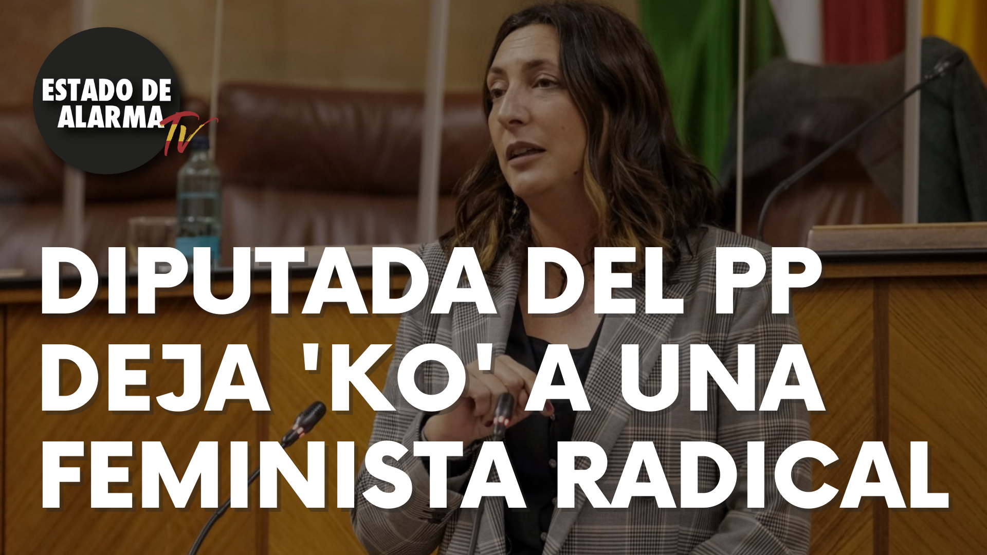 Una diputada del PP deja 'KO' a una feminista radical
