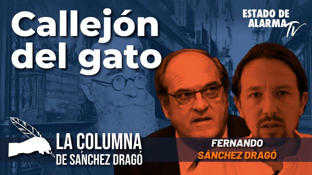 La columna de Sánchez Dragó: Callejón del Gato