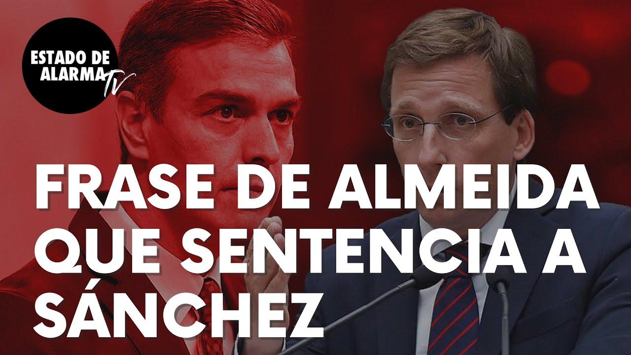 """La frase de José Luís Martínez-Almeida que sentencia a Pedro Sánchez: """"De derrota en derrota…"""""""