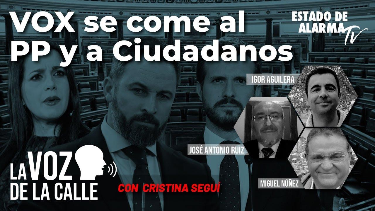 La Voz de la Calle con Cristina Seguí: Vox se come al PP y a Ciudadanos