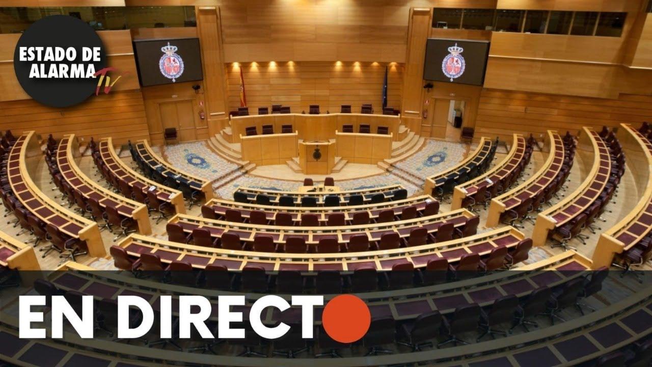 DIRECTO | Sesión plenaria en el Senado