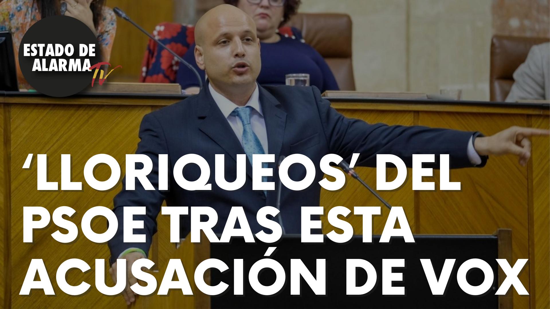 'Lloriqueos' del PSOE tras esta acusación de Vox